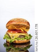 Купить «Burger With Vegetables», фото № 26601178, снято 22 марта 2017 г. (c) Андрей Скат / Фотобанк Лори