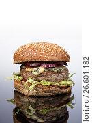 Купить «Burger With Vegetables», фото № 26601182, снято 22 марта 2017 г. (c) Андрей Скат / Фотобанк Лори
