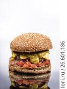 Купить «Burger With Vegetables», фото № 26601186, снято 22 марта 2017 г. (c) Андрей Скат / Фотобанк Лори