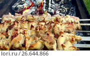 Купить «meat roasting on skewers in brazier outdoors», видеоролик № 26644866, снято 8 июля 2017 г. (c) Syda Productions / Фотобанк Лори
