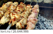 Купить «meat roasting on skewers in brazier outdoors», видеоролик № 26644986, снято 8 июля 2017 г. (c) Syda Productions / Фотобанк Лори