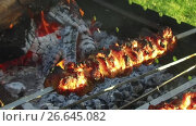 Купить «meat roasting on skewers in brazier outdoors», видеоролик № 26645082, снято 8 июля 2017 г. (c) Syda Productions / Фотобанк Лори