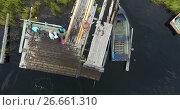 Вид с верху на деревянный пирс с родителями и ребенком, купающимся в озере. Стоковое видео, видеограф Кекяляйнен Андрей / Фотобанк Лори