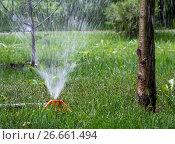 Купить «Работа системы полива в парке», фото № 26661494, снято 26 мая 2017 г. (c) Вячеслав Палес / Фотобанк Лори