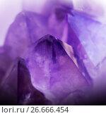 Купить «Gemstone Amethyst crystal», фото № 26666454, снято 28 октября 2012 г. (c) ElenArt / Фотобанк Лори