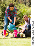 Купить «Woman with man watering plant at lawn», фото № 26672002, снято 16 февраля 2016 г. (c) Wavebreak Media / Фотобанк Лори