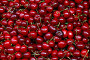Fresh red cherries on retail market close up, фото № 26673542, снято 28 мая 2017 г. (c) Anton Eine / Фотобанк Лори