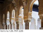 Купить «Colonnade of Courtyard of the Lions (Patio de los Leones) in Alhambra», фото № 26707226, снято 13 мая 2016 г. (c) Яков Филимонов / Фотобанк Лори