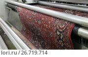 Купить «Химчистка ковров», видеоролик № 26719714, снято 19 июня 2017 г. (c) Евгений Ткачёв / Фотобанк Лори