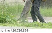 Gardener cuts a grass using a lawnmower outdoors. Стоковое видео, видеограф worker / Фотобанк Лори