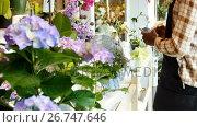 Купить «Female florist taking photograph of flowers with mobile phone», видеоролик № 26747646, снято 21 ноября 2018 г. (c) Wavebreak Media / Фотобанк Лори