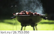Купить «barbecue meat on grill or brazier outdoors», видеоролик № 26753050, снято 17 июля 2019 г. (c) Syda Productions / Фотобанк Лори