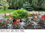 Купить «Клумба с декоративными цветами и кустарники в саду», фото № 26761782, снято 5 июля 2017 г. (c) Илюхина Наталья / Фотобанк Лори