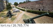 Купить «Музей вооружений под открытым небом в Белградской крепости, Сербия», фото № 26765774, снято 31 июля 2017 г. (c) V.Ivantsov / Фотобанк Лори