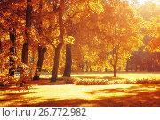 Купить «Autumn landscape, autumn park in with golden autumn trees in sunny weather», фото № 26772982, снято 15 августа 2017 г. (c) Зезелина Марина / Фотобанк Лори