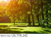 Купить «Summer landscape - colorful summer park with green summer trees in sunny weather», фото № 26778242, снято 15 августа 2017 г. (c) Зезелина Марина / Фотобанк Лори