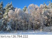 Купить «Зимний пейзаж с лесом в солнечную погоду», фото № 26784222, снято 15 ноября 2016 г. (c) Елена Коромыслова / Фотобанк Лори