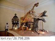 Купить «Dinosaur fossil on display inside the National Museum of Quinta da Boa Vista linked to UFRJ in the São Cristóvão neighborhood, Rio de Janeiro, Rio de Janeiro, Brazil, 04.2017», фото № 26798206, снято 23 апреля 2017 г. (c) age Fotostock / Фотобанк Лори