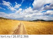 Купить «Beautiful cloudscape over arid African savannah», фото № 26812366, снято 18 августа 2015 г. (c) Сергей Новиков / Фотобанк Лори