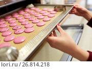 Купить «chef with macarons on oven tray at confectionery», фото № 26814218, снято 8 мая 2017 г. (c) Syda Productions / Фотобанк Лори