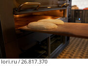 Купить «yeast bread dough on oven tray at bakery kitchen», фото № 26817370, снято 16 мая 2017 г. (c) Syda Productions / Фотобанк Лори