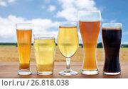 Купить «different types of beer glasses over cereal field», фото № 26818038, снято 22 июля 2016 г. (c) Syda Productions / Фотобанк Лори