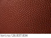 Купить «Close-up of American football», фото № 26837834, снято 12 апреля 2017 г. (c) Wavebreak Media / Фотобанк Лори