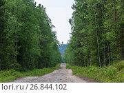 Купить «The road to Sekirnaya mountain on Solovki», фото № 26844102, снято 26 июля 2017 г. (c) Валерий Смирнов / Фотобанк Лори