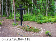 Купить «The place of mass burials of those repressed in the 1920 – 1930s on the Sekirnaya mountain on Solovki», фото № 26844118, снято 26 июля 2017 г. (c) Валерий Смирнов / Фотобанк Лори