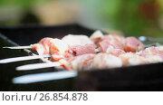 Купить «Cooking meat on grill», видеоролик № 26854878, снято 4 августа 2017 г. (c) Алексей Макаров / Фотобанк Лори