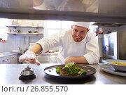 Купить «happy male chef cooking food at restaurant kitchen», фото № 26855570, снято 2 апреля 2017 г. (c) Syda Productions / Фотобанк Лори