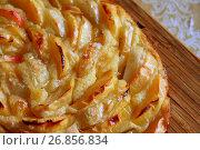 Купить «Baked charlotte with red apples and sugar», фото № 26856834, снято 26 августа 2017 г. (c) Володина Ольга / Фотобанк Лори