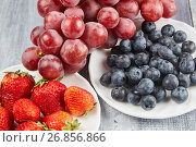 Berries and grapes on a gray wooden background. Стоковое фото, фотограф Алексей Спирин / Фотобанк Лори