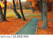 Купить «Autumn landscape with golden autumn trees and orange fallen leaves. Autumn deserted alley», фото № 26868966, снято 9 октября 2016 г. (c) Зезелина Марина / Фотобанк Лори