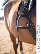Close-up of saddle tied on horse. Стоковое фото, агентство Wavebreak Media / Фотобанк Лори