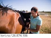 Female jockey fastening saddle. Стоковое фото, агентство Wavebreak Media / Фотобанк Лори