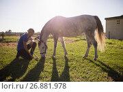 Купить «Female jockey looking at horse while kneeling on grassy field», фото № 26881978, снято 3 мая 2017 г. (c) Wavebreak Media / Фотобанк Лори