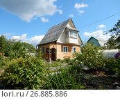 Купить «Деревянный дом на дачном участке в шесть соток», эксклюзивное фото № 26885886, снято 5 августа 2017 г. (c) lana1501 / Фотобанк Лори