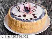 Купить «luscious poppy seeds, walnut and raisins sponge cake», фото № 26886062, снято 22 мая 2018 г. (c) Oksana Zh / Фотобанк Лори