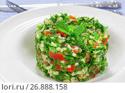Купить «tabbouleh or parsley, peppermint, spring onion, tomato salad», фото № 26888158, снято 18 января 2019 г. (c) Oksana Zh / Фотобанк Лори
