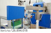 Купить «Chemidtry industry - plastic granules on extruder for making plastics on extrusion manufactory», видеоролик № 26894018, снято 23 мая 2018 г. (c) Константин Шишкин / Фотобанк Лори