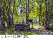 Купить «Памятный крест на месте часовни, где был похоронен Григорий Распутин», фото № 26894202, снято 19 августа 2017 г. (c) Николай Лемешев / Фотобанк Лори