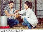 Купить «man farmer chatting with woman veterinarian in coop», фото № 26907814, снято 16 июля 2019 г. (c) Яков Филимонов / Фотобанк Лори