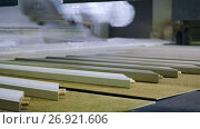 Wooden parts are being varnished or primed on modern woodworking equipment. 4K. Стоковое видео, видеограф ActionStore / Фотобанк Лори