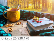 Купить «Autumn background. Cup of tea, cookies, old books and plaid on windowsill and autumn scene outdoors. Still life with concept of spending autumn time at cozy home Autumn still life.», фото № 26930170, снято 8 сентября 2017 г. (c) Зезелина Марина / Фотобанк Лори