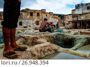 Купить «Fes, Morocco, Africa. The ancient craft of dyeing leather.», фото № 26948394, снято 25 мая 2019 г. (c) age Fotostock / Фотобанк Лори