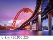 Сиреневый вечер у моста Lilac evening at the Bridge (2015 год). Редакционное фото, фотограф Baturina Yuliya / Фотобанк Лори