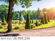 Купить «Фонтан в фигурном парке Fountain in a figured park», фото № 26950234, снято 10 июля 2017 г. (c) Baturina Yuliya / Фотобанк Лори