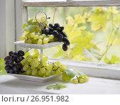 Купить «the grapes on windowsill», фото № 26951982, снято 14 сентября 2017 г. (c) Майя Крученкова / Фотобанк Лори