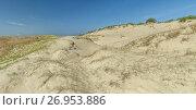 Купить «Sand dunes in the Lithuanian resort Nida», фото № 26953886, снято 19 июля 2017 г. (c) Geraldas Galinauskas / Фотобанк Лори